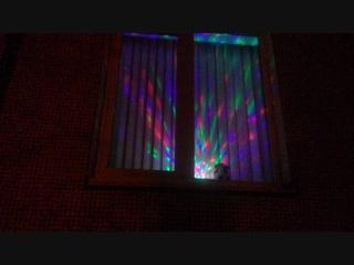 christmas window TLT