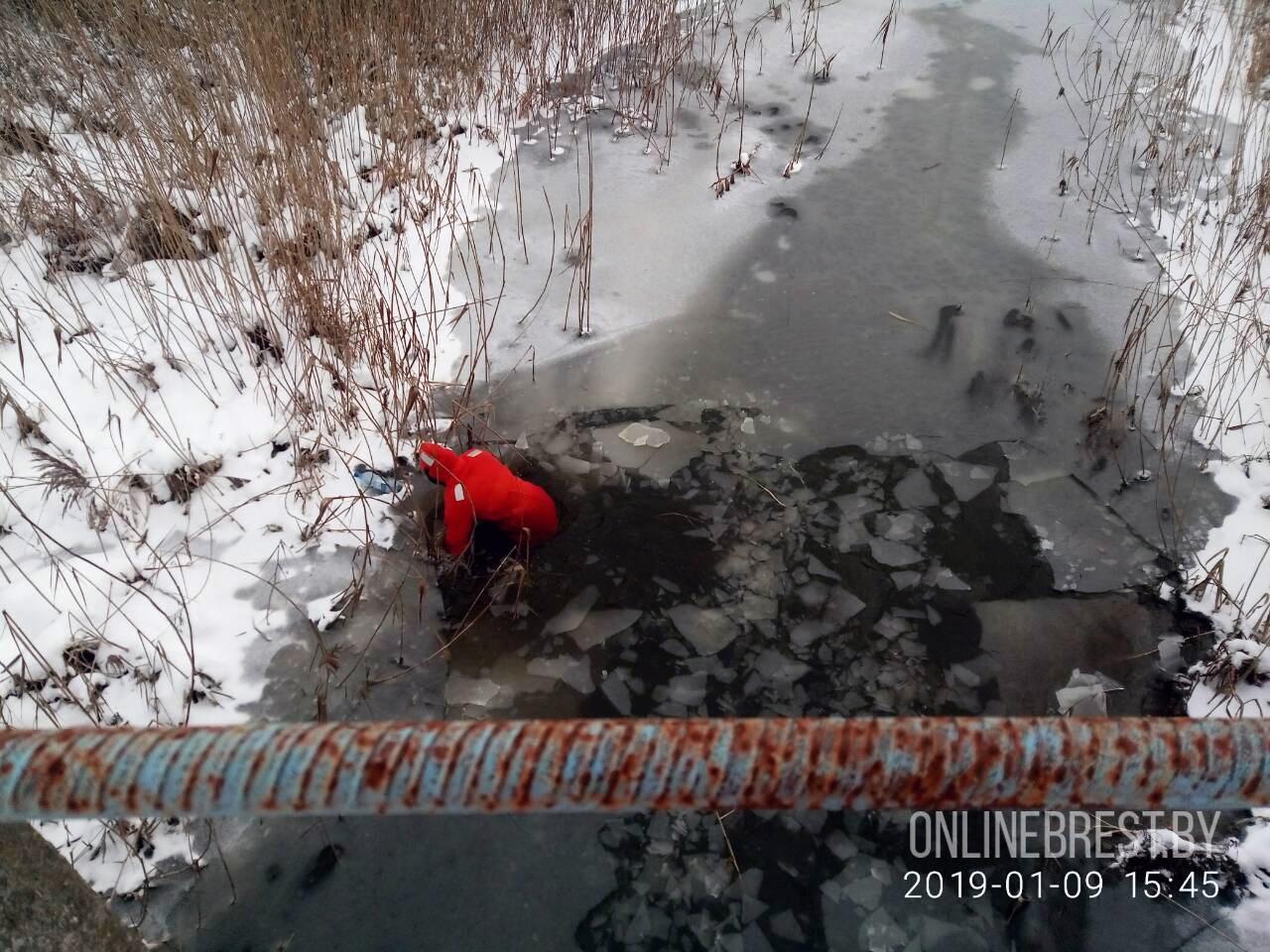 Жителя Брестского района ищут 10 дней. Возбуждено уголовное дело