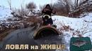 ГОРЕ РЫБАКИ Зимняя ловля ОКУНЯ на ЖИВЦА Опять приключения