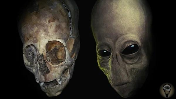 Тайна удлиненных черепов Паракаса. Люди или нет Вытянутые черепа находят в разных частях планеты и считается, что люди сами влияли на форму черепа, обвязывая детей в младенчестве и придумывая