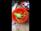 Jinkook finding Hoseoks 600 Kermit.