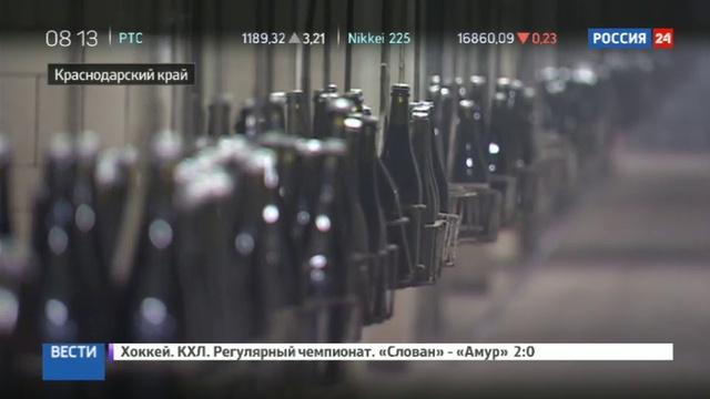 Новости на Россия 24 Абрау Дюрсо превращается в столицу винного туризма