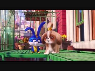 «Тайная жизнь домашних животных 2» Трейлер #4 (англ)
