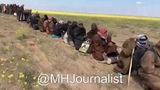 THE LONGEST LINE OF ISIS FROM DIFFERENT NATIONALITIES SURRENDERS TO S.D.F IN AL-BAGHOUZ DEIR EZZOUR