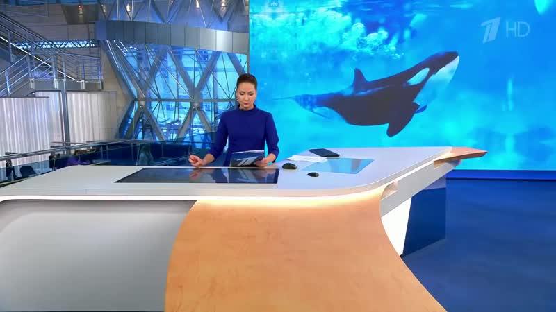 Владимир-Путин-потребовал-за-неделю-разобраться-с-«китовой-тюрьмой»-в-Приморье.mp4