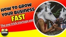 How to grow your business FAST | The one trick start-ups use to go viral