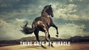 Bruce Springsteen There Goes My Miracle Lyric Video