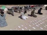 Сирия: САА захватила боевиков ИГ в районе Пальмиры