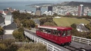 Visit Wellington, New Zealand with the world's most awarded airline | Singapore Airlines