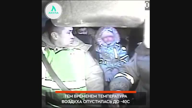 Холодная дорога домой АКУЛА