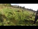 Hunting Woodcock Pheasant Rabbit Jan 2018 Ireland