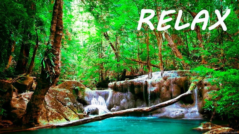 Relaxing Music and Soothing Water Sounds 🔴Sleep 247 BGM Relaxation
