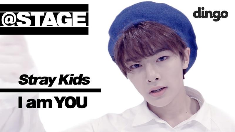 청순vs다크! 스트레이 키즈의 존멋 댄스 Stray Kids - I am you @stage ㅣ 딩고뮤직 dingo ㅣ 댄스 dance l Stray kids