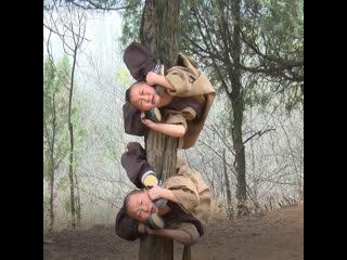6-летних монахов скручивают в дугу: жесткие тренировки в школе буддизма Шаолинь