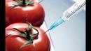 Правда о продуктах Г М О которую не спешат обнародовать Чем реально нас кормят Док фильм