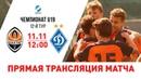 Матч Шахтер – Динамо в юношеском чемпионате. Прямая трансляция (11.11.2018)