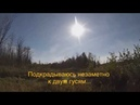 Охота на гуся с подхода на озерах. Goose hunting with approach to the lakes.