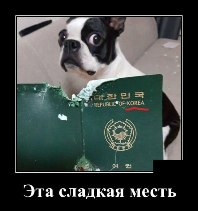http://pp.userapi.com/c852220/v852220060/8895/BdVeH7ejW3o.jpg