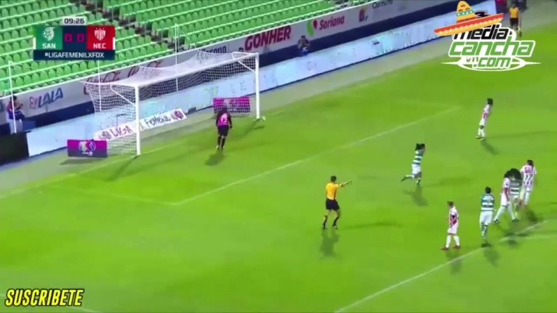 Empate entre Santos y Necaxa cierra jornada