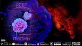 ReeF - Пионы (feat. Ivan Valeev)