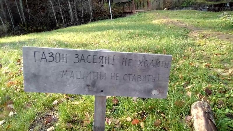 Газон Засеян