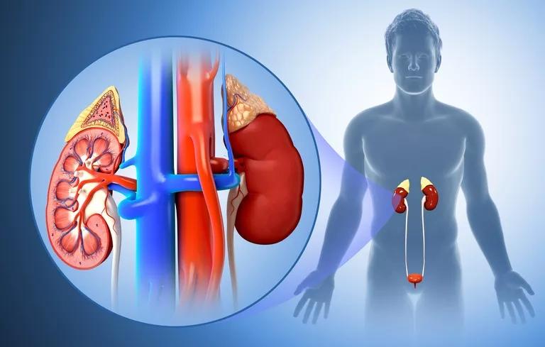 Побочные эффекты Валсартана  включают: проблемы с почками, аллергия, опухоли.