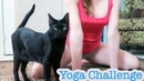 At Home Yoga Poses Challenge