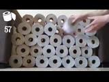 Хозяева кота решили сделать ему приятное украсили комнату 100 рулонами туалетной бумаги. Секрет кошачьего счастья раскрыт))