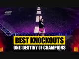 Лучшие нокауты турнира ONE: Destiny of Champions