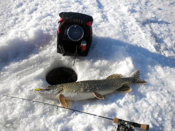 Сонар (Эхолот) с жидкокристаллическим дисплеем для зимней рыбалки