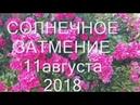 Солнечное затмение 11 августа 2018 - Время Перемен ...