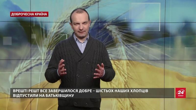 Увязнення українських добровольців у Грузії було вигідне Путіну, Доброчесна країна
