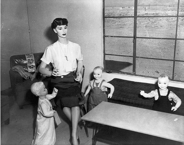 Испытание атомной бомбы на манекенах В 1953 году в Неваде была проведена операция «Doorstep» («Порог»). Целью испытаний стало изучение последствий взрыва атомной бомбы. Для операции создали
