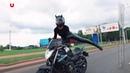 Танцы на мотоцикле прямо на дорогах Минска Черная пантера VIDEOZi ru
