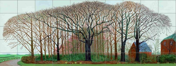 одного шедевра. «Высокие деревья близ Уортера», Дэвид Хокни