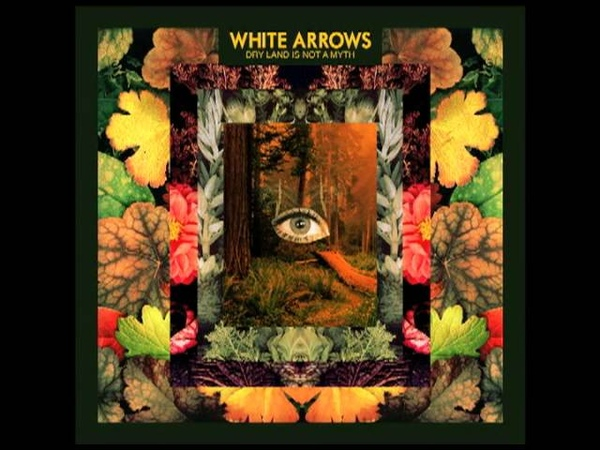 White Arrows Settle Down