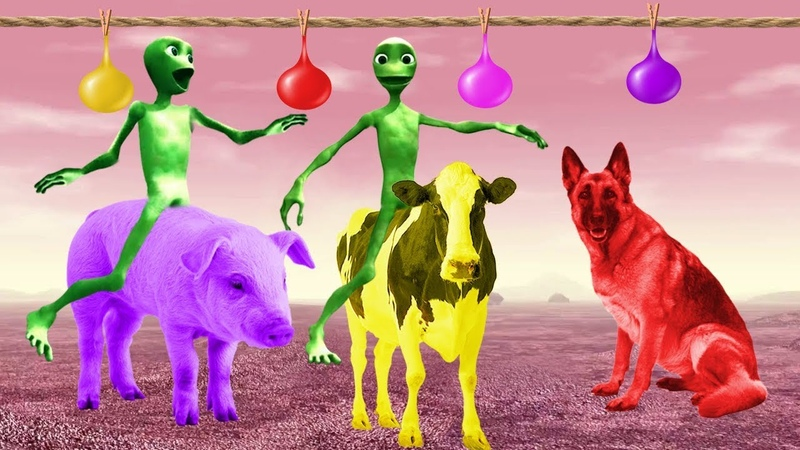 учим цвета на английском для детей домашние животные на английском обучающее видео для детей