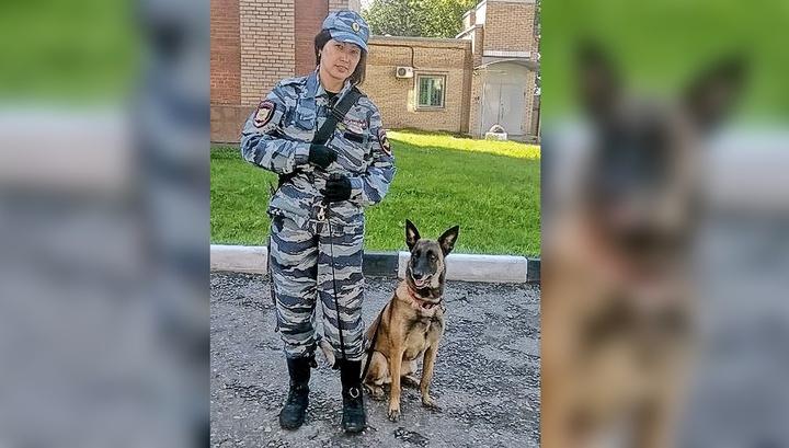 Вести Ru В Подмосковье мужчина застрелил полицейскую овчарку на глазах у кинолога