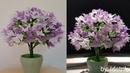 DIY Bunga dari plastik kresek | DIY how to make flowers from plastic