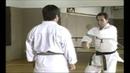 Karate Kihon Ippon Kumite 3 16