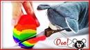 Кинетический песок Cоздание радуги яйцо Узнать цвета для детей
