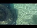 Okean World