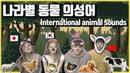 영어 한국어 일본어 중국어 나라별 동물 의성어 차이 English Korean Chinese Japanese Animal Sound differences