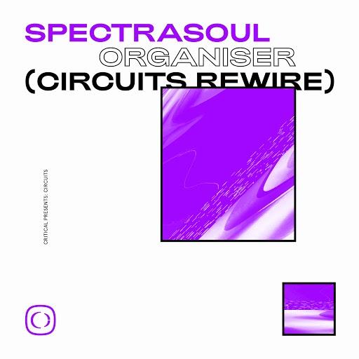 SpectraSoul альбом Organiser (Circuits Rewire)