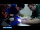 Ярославские спасатели провели необычную операцию