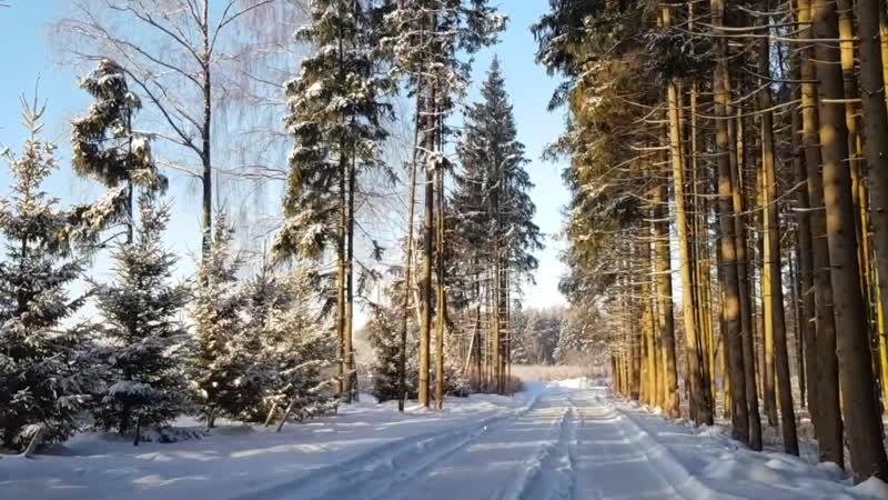 Новые Земли - коттеджный поселок, Ленинградское шоссе