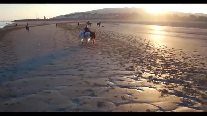 Лошади и море