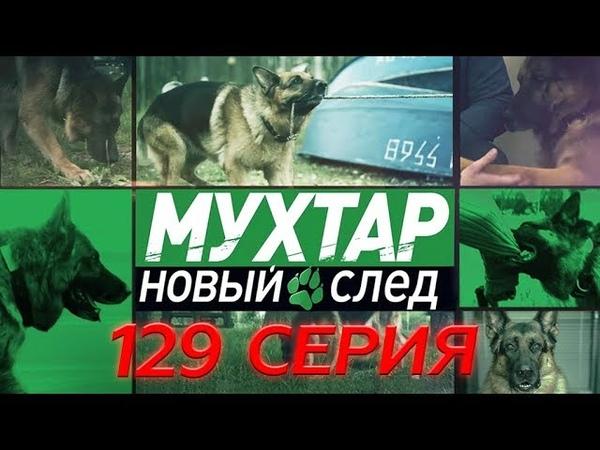 Мухтар. Новый след. 129 серия. Собаки бывают разные