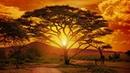 Bok van Blerk - Bosveld Afrika