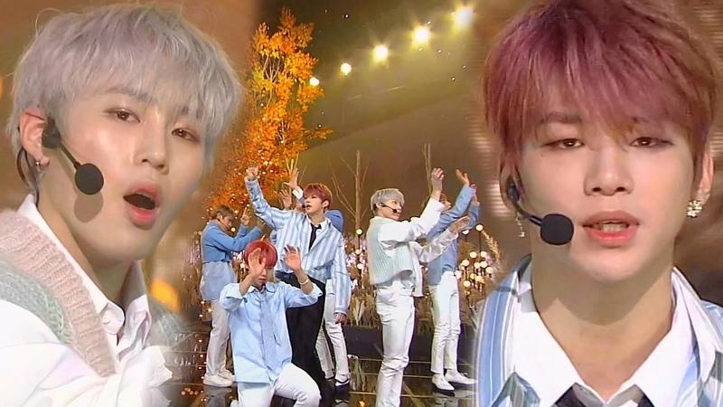Wanna One(워너원) - Wind flower(봄바람) @인기가요 Inkigayo 20181202